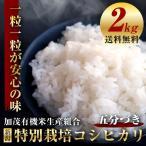 加茂有機米 特別栽培米 コシヒカリ 五分づき 2kg お試し 送料無料(一部地域送料負担あり)新米 新潟産 農薬不使用 有機質肥料 地球にも人にも優しい 安心の味