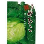 野菜の種 キャベツ やひこ 1.8ml