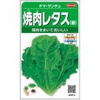 サカタのタネ 焼肉レタス チマ・サンチュ 3.5ml 実咲野菜
