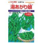 カネコ種苗 湯あがり娘 枝豆 200粒 野菜種子