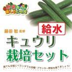 藤田智先生監修 キュウリ用 給水プランター栽培セット 苗はついておりません