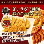 累計1億個販売 全国百貨店で日本一売れた餃子セット 生冷凍ぎょうざ ギフト おつまみ (3種類計120個入)