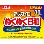 【あわせ買い1999円以上で送料無料】興和 ホッカイロ ぬくぬく日和 貼らない レギュラー 30個