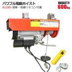 パワフル電動ホイスト 耐荷重600kg AC100V 電動ウインチ