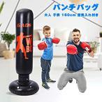takarafune パンチバッグ エアーサンドバッグ ストレス解消 室内 運動不足 格闘 キックボクシング トレーニング