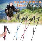 トレッキングポール 2本セット スティック ステッキ 登山ステッキ つえ 山歩き ハイキング 登山 富士登山 アルミ製 軽量 持ち運び 収納ケース付き