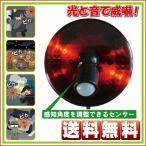 人感センサー LED回転灯 スーパーパトピカ SLR100 リーベックス 送料無料
