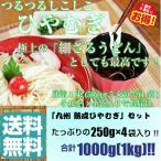 ひやむぎ 冷麦 お取り寄せ 夏の冷し麺 つるつるしこしこ  九州特産 本場熟成ひやむぎ 細うどん たっぷり1000gサイズ ※そうめんセットもあり