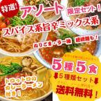 ラーメン お取り寄せ 本場久留米ラーメンシリーズ 5種5人前アソートセット ピリ辛スパイス系スープの5種詰め合わせ お試しグルメ