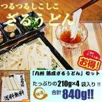 送料無料!  九州特産 本場熟成麺 つるつるモチモチ食感! ざるうどんセット(約8人前)  ★ お好みのめんつゆでどうぞ!