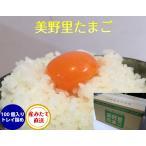 卵 たまご 玉子 (送料無料)美野里 たまご 加賀の朝日 100コ トレイ箱詰め