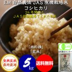 【送料無料】 食用玄米 5kg 令和元年産 新米 JAS認証 EM自然農法 無農薬 有機米 コシヒカリ 「水の精」