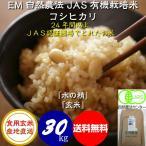【送料無料】 食用玄米 30kg 令和2年産 新米 JAS認証 EM自然農法 無農薬 有機米 コシヒカリ 「水の精」