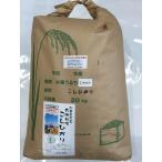 送料無料 無農薬 お米 有機米 20kg コシヒカリ 自然農法 令和2年産 新米 石川県産 辻本さんの有機栽培米 コシヒカリ 食用 玄米