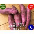 無農薬 EM農法 わけあり 紅はるか(さつまいも)1袋1kg サツマイモ