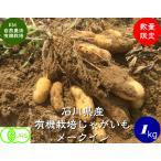 有機ジャガイモ(メークイン)1kg