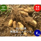無農薬ジャガイモ(メークイン)1kg