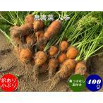 無農薬 EM農法 わけあり 人参 小ぶり 【葉なし泥付き】(にんじん)1袋 400g