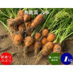 無農薬 EM農法 わけあり 人参 小ぶり 【葉なし泥付き】(にんじん)1袋 1kg
