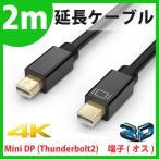 [QICENT] 2m 金メッキコネクタ Mini DisplayPort (Mini DP) ケーブル HDTV 3D 4K 高解像度 2160P 超高画質 3840 x 2160 MTMD4-20