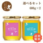 はちみつ 国産 純粋 非加熱 はちみつ600g2本お得セット 生産直売 岐阜県産 国産蜂蜜