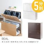 ショッピングダストbox キャスター付きダストボックス REAL 5分別タイプ 薄型 ( ゴミ箱 ごみ箱 ダストbox くずかご 分別ゴミ箱 縦型 スリム キッチン おしゃれ )