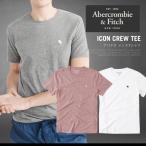 アバクロ Tシャツ 半袖 メンズ アバクロンビー&フィッチ Abercrombie&Fitch クルーネック AM11172SL 大きいサイズ メール便送料無料