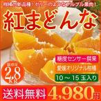 店長激オシ 送料無料柑 橘の新品種 ゼリーのようなプルプル果肉 愛媛産柑橘 紅まどんな 2.8kg