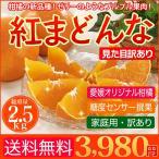 愛媛産 紅まどんな 2.5kg 送料無料 訳あり 家庭用 柑橘 の 新品種  紅マドンナ