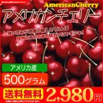 アメリカンチェリー 送料無料 アメリカ産 さくらんぼ  500g 大粒