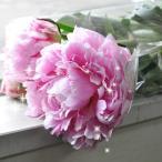 シャクヤク 芍薬 しゃくやく ( 八重咲き ) ピンク 20本