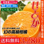 人気のみかん せとか こんな柑橘あったの? 送料無料 幻の高級柑橘 総重量 約2.5kg 訳ありではありません 愛媛産などを使用します。