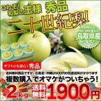 鳥取産 二十世紀梨 大玉 2kg 贈答用 秀品 100年以上愛され続けた青梨 送料無料 複数個購入でおまけ付き