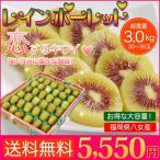 キウイフルーツ 福岡県産 レインボーレッド キウイ 3kg 30〜36玉 送料無料