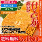 訳あり せとか セトカ 5kg 送料無料 家庭用 人気のみかん 柑橘 和歌山県産