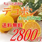 送料無料 柑橘の1番人気 デコポン 訳あり 家庭用 5kg