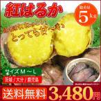 店長激オシ送料無料 紅あずま の味をはるかに超えたおいしさ 紅はるか 5kg
