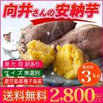 さつまいも 安納芋 3kg送料無料 訳あり 鹿児島 種子島産 無選別 焼き芋に最適
