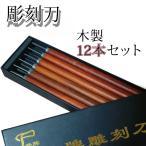 彫刻刀 セット 12本 専用 ケース プロ仕様 1-4mm 6種類 伝統工芸 木彫り 芸術 高級 (12本)