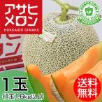 父の日 ギフト|北海道ふらのメロン(赤肉)1玉 約1.6kg以上 共撰 優品以上 北海道 赤肉 メロン