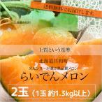 北海道らいでんメロン(赤肉)2玉(約1.6kg以上×2) 共撰 優品以上