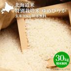 新米 2019年産|北海道米 特別栽培米 ゆめぴりか|特A(玄米 30kg/精米無料)北海道米/減農薬/30kg