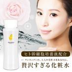 フィシスウォーター120ml|化粧水|ヒト幹細胞培養液配合・富士山天然ナノウォーター・天然ローズウォーター