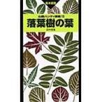 落葉樹の葉/田中啓幾