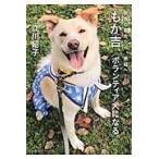 もか吉、ボランティア犬になる。/江川紹子