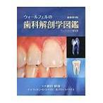 ウォールフェルの歯科解剖学図鑑 最新第8版 ペーパー/リッケン・C.シャイ