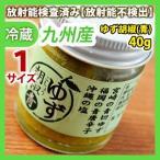 ゆず胡椒(青) 40g 同梱サイズ1 放射能検査済み