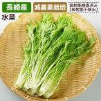 水菜約200g 長崎県産 同梱サイズ6 放射能検査済み
