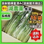 《送料込み》水菜 200g×16袋(約3.2kg) 業務用 箱売り 減農薬 放射能検査済み 《同梱不可》