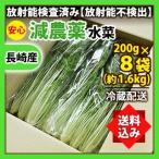 《送料込み》水菜 200g×8袋(約1.6kg) 業務用 箱売り 減農薬 放射能検査済み 《同梱不可》